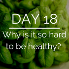 Day 18 of the 21 Day Keto Challenge