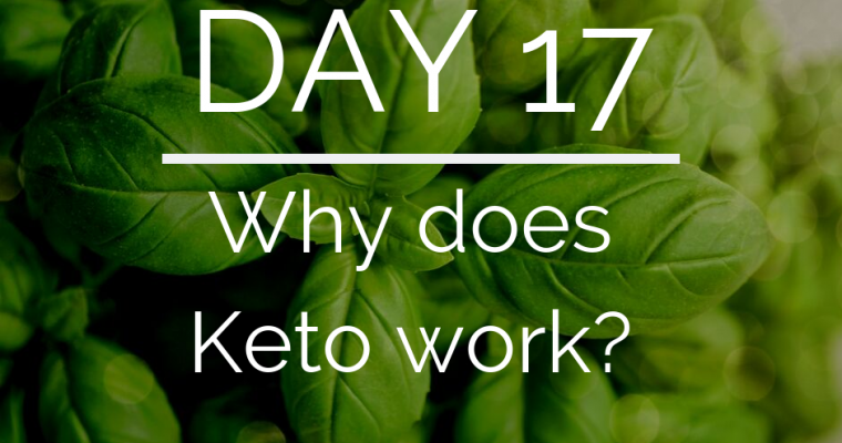 Day 17 of the 21 Day Keto Challenge