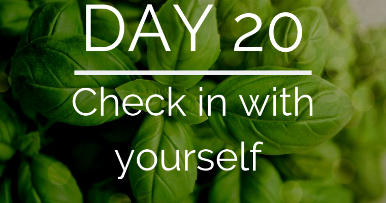 Day 20 of the 21 Day Keto Challenge